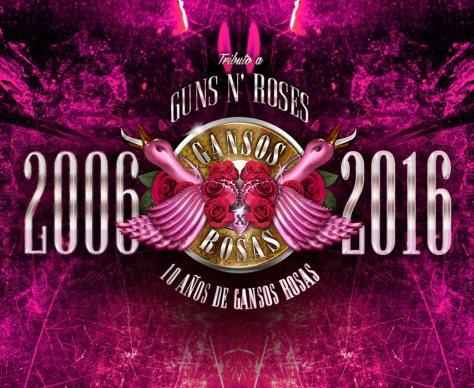 Gansos Rosas 16 Julio
